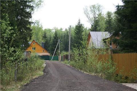 Прекрасный участок в хвойном лесу, Можайское - Минское, Летний отдых. - Фото 1