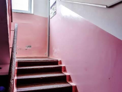 Продажа однокомнатной квартиры на улице Карбышева, 14 в Петропавловске, Купить квартиру в Петропавловске-Камчатском по недорогой цене, ID объекта - 319818657 - Фото 1