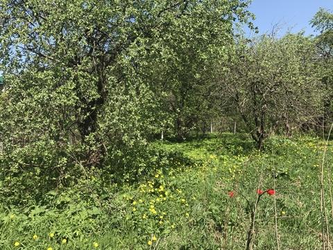 Д. Бараново 16.5 соток ИЖС - Фото 4