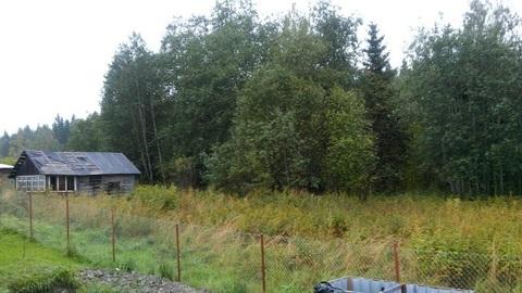 Продам дом в п.Кузнечное(Приозерский р-н) - Фото 3