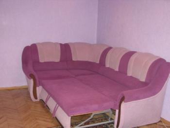Курганская область, Курган р-н Центральный, ул Красина, 63а - Фото 5