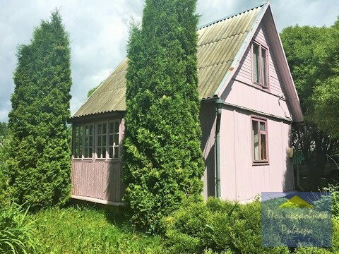 Дача с гостевым домиком на зеленом хвойномучастке - Фото 2