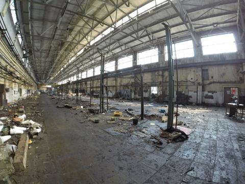 Сдается производственное помещение 1000м2 - Фото 1