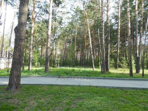 Продажа участка, Приобский, Новосибирский район, Пер.Рублевский - Фото 4