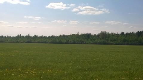 Три с половиной гектара земли под застройку - Фото 2