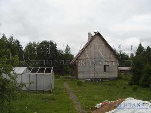 Продажа участка, Ивангород, Кингисеппский район, 1 линия - Фото 1