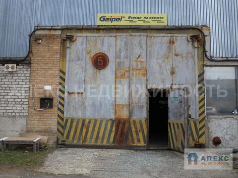 Аренда помещения пл. 900 м2 под производство, склад, Старая Купавна . - Фото 3