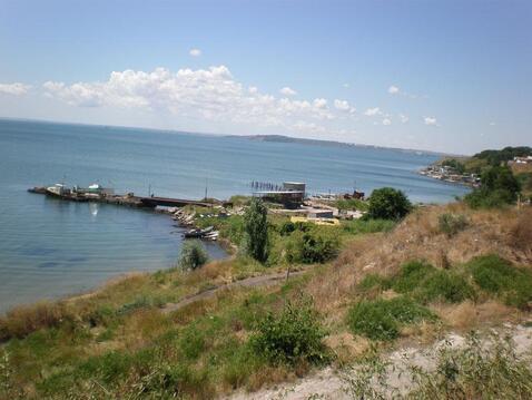 Мидийное хозяйство в Крыму (Керчь) - Фото 1