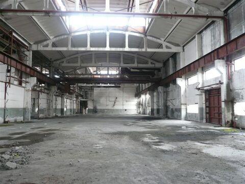 Продается здание 11291 м2, Искитим - Фото 4