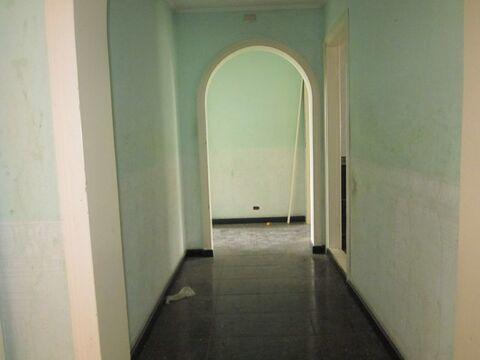 3х комнатная квартира с шикарной планировкой! - Фото 3