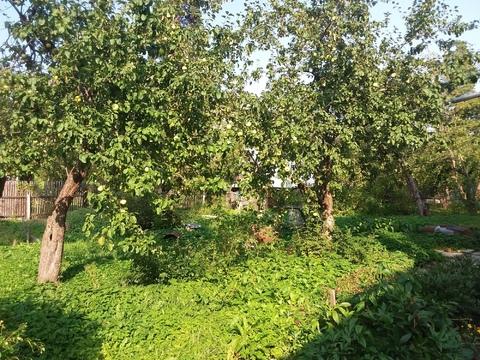 Шикарный участок 29 сот. с соснами в п. Загорянский, 17 км. от МКАД - Фото 4