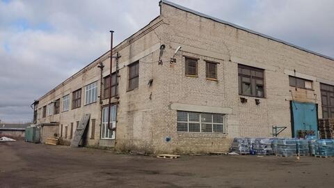 Сдам производственный комплекс 4 884 кв.м. - Фото 1