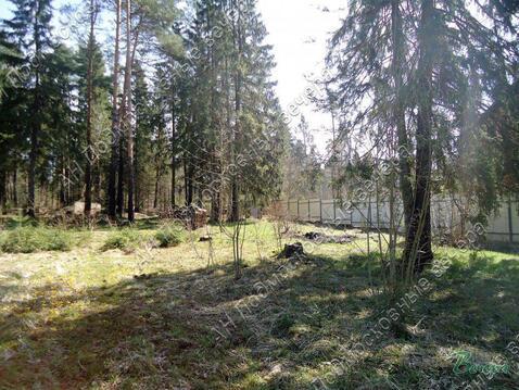 Новорижское ш. 34 км от МКАД, Клопово, Участок 20 сот. - Фото 4