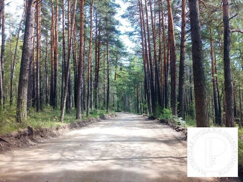 Участок Район Гремячая Грива - Фото 5