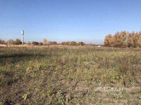 Продажа участка, Курский район - Фото 2