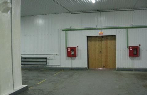 Сдам складское помещение 1500 м2 - Фото 3