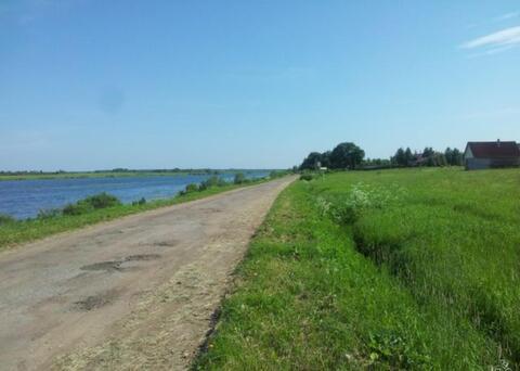 Купить земельный участок в деревне Шелонь, Шимского района - Фото 5