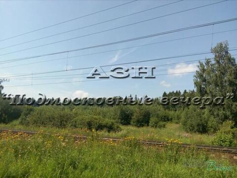 Дмитровское ш. 28 км от МКАД, Большая Черная, Участок 150 сот. - Фото 3