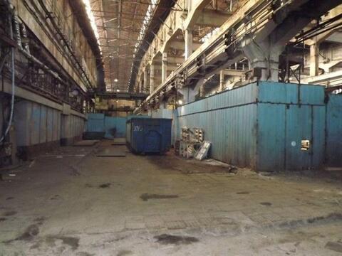 Сдам производственное помещение 2400 кв.м, м. Купчино - Фото 1