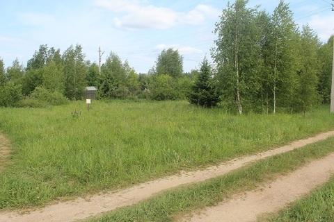 Продается участок 650 соток в деревне Лизуново. - Фото 2