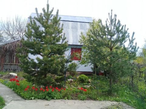 Продается дачный участок с домом (г.Кашира) - Фото 5