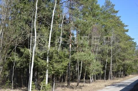 Лесной участок 28 сот. - Фото 2