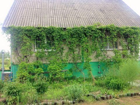 Продажа дома, Новгородка, Пушкиногорский район - Фото 4
