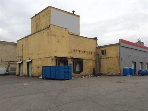 Сдам складское помещение 361 кв.м, м. Электросила - Фото 1