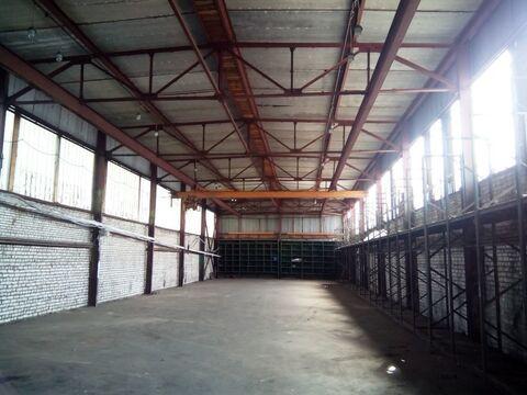 Сдам склад 507,2 кв.м. Руза , Волоколамское ш. 17 - Фото 1