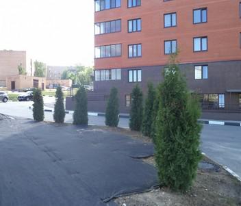 Продажа 1-комнатной квартиры в г.Чехове - Фото 2