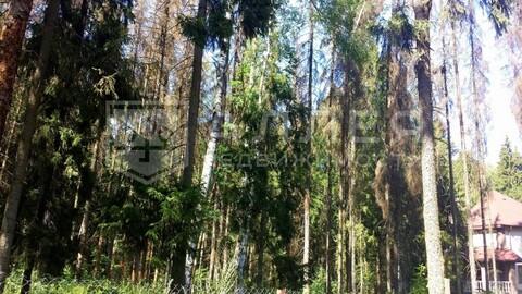 Лесной участок 8 сот. - Фото 5