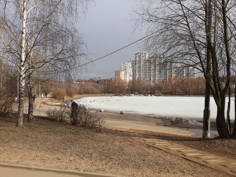 Продажа 2 комнатной квартиры в Москве, район Раменки, метро Минская - Фото 2