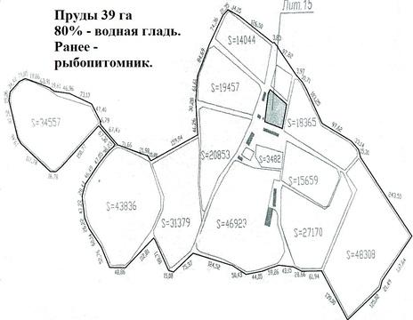 Пруды 39 га под рыбопитомник под Тимашевском. - Фото 1