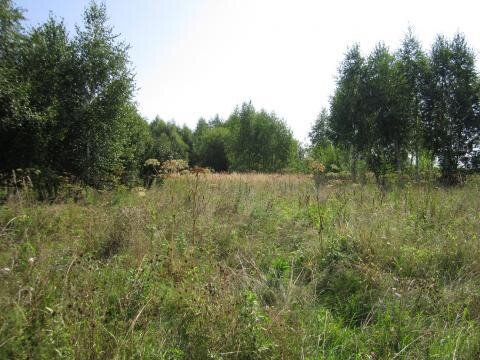 Земельный участок 27 соток в д. Пушкино - Фото 1