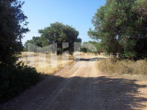 Зем. участок Халкидики Полигирос - Фото 5