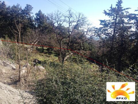 Продается ровный земельный участок возле парка Ясная Поляна! - Фото 4