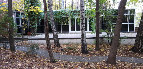 Дом 500 кв.м. на участке 30 соток - Фото 4