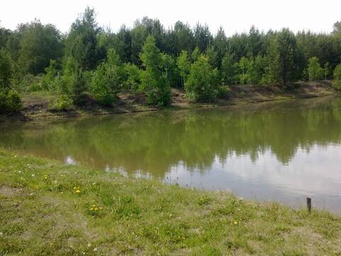 Участок 12 Га в Белоярском районе Свердловской области - Фото 1