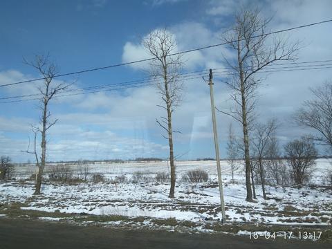 Продается земля под многоквартирную застройку в Тосненском районе - Фото 1