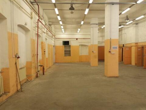 Сдам производственное помещение 560 кв.м, м. Черная речка - Фото 1