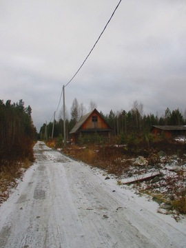 Палкинский торфянник СНТ ротор - Фото 4