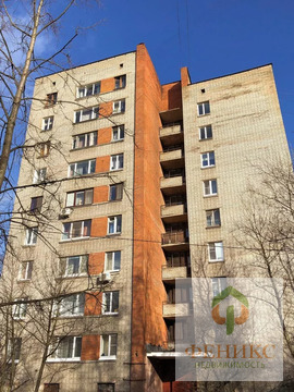 Объявление №52359490: Продаю 1 комн. квартиру. Санкт-Петербург, ул. Белы Куна, 4 корп. 4,
