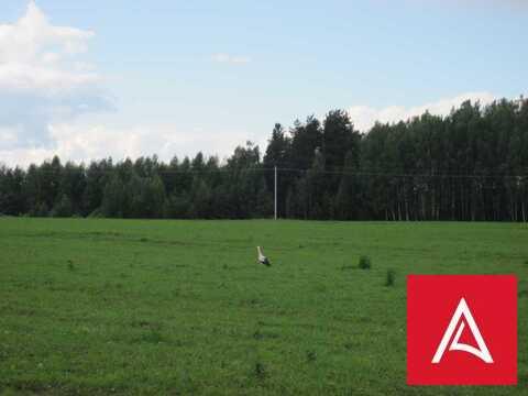 Земельный участок 300 га сельхознзначения, Торжокский р-н, Тверская об - Фото 5