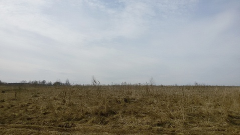 Участок 1,68 Га знп в 27 км по Калужскому шоссе - Фото 4