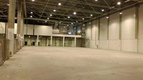 Сдам складское помещение 3500 кв.м, м. Проспект Ветеранов - Фото 1