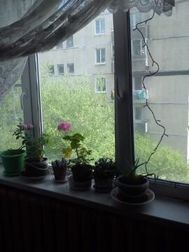 Продажа 2 к.квартиры в Романовке (Всеволожск ) - Фото 1