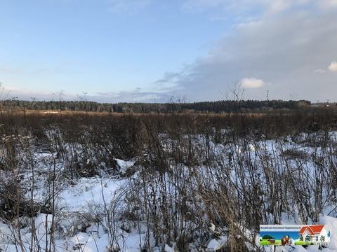 Продаю участок в Московской области на берегу реки - Фото 3