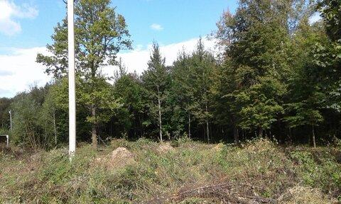 Продается земельный участок ИЖС в Белкино - Фото 5