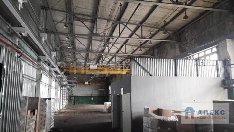 Аренда помещения пл. 770 м2 под производство, Малаховка Егорьевское . - Фото 3