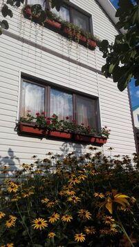 Аренда дома посуточно, Сочи, Улица Измайловская - Фото 1